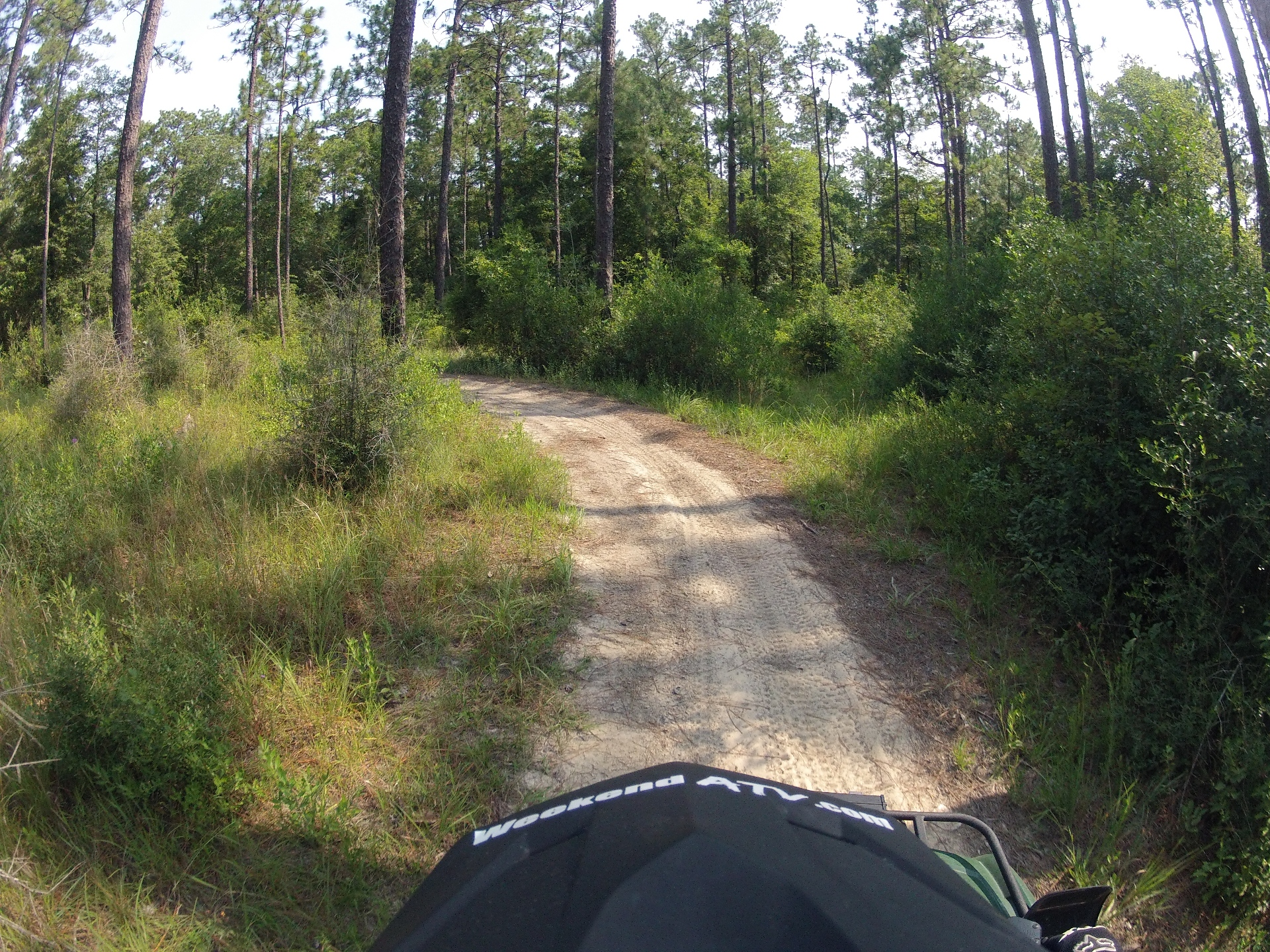 Trail Review Desoto National Forest Bethel Atv Trail