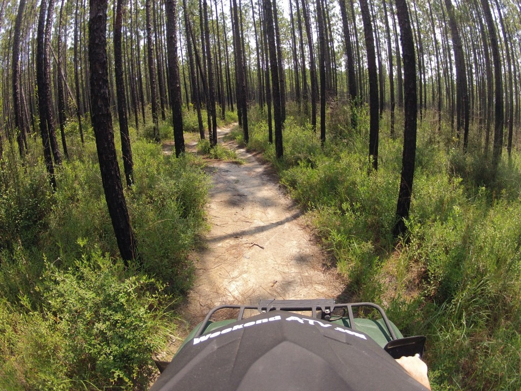 Side By Side Atv >> Trail Review: Desoto National Forest Bethel ATV Trail - Saucier, MS - WeekendATV.com